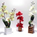 Orchidée Artificielle dans un contenant en bois fait main