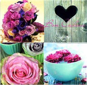 Carte cadeaux fleurs